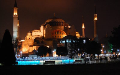 Istanbul…a beautiful city with turkeys everywhere
