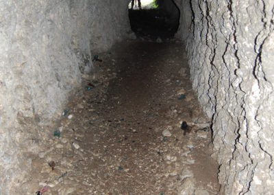 Looking down the extensive tunnel systems