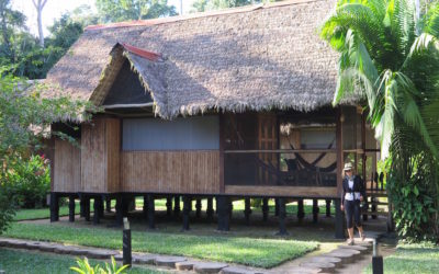 Amazonia: Glamping in the jungle